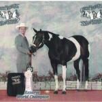 PtHA Reserve World Champion